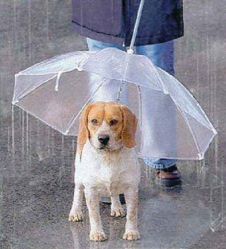 宝や ペット用傘
