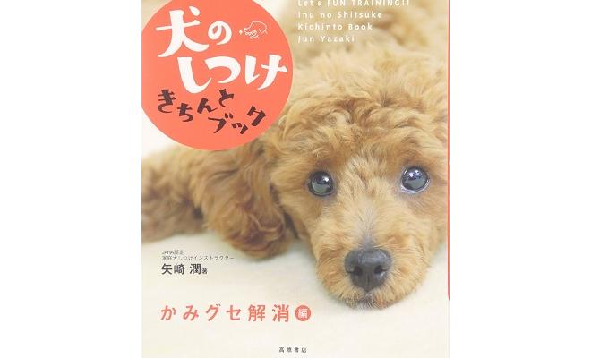 矢崎潤のしつけ本