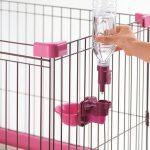 犬の給水器おすすめ5選