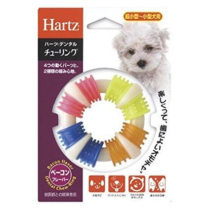 ハーツ (Hartz) デンタルチューリング