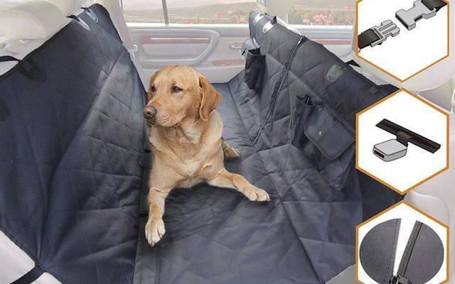 愛犬との快適なドライブを実現するためのグッズ3選